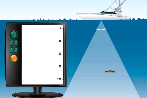 声呐测深及探鱼的原理及应用
